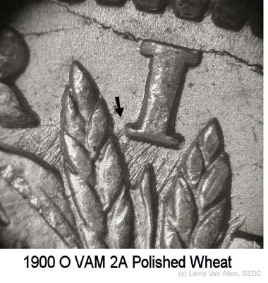 1900-O VAM-2A Polished Wheat.jpg