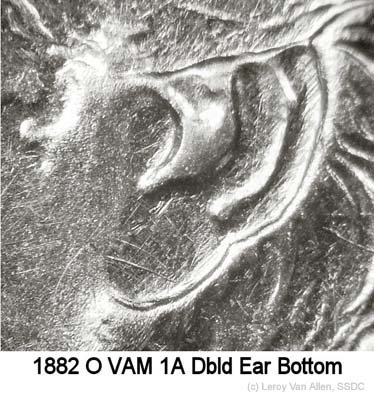 1882-O VAM-1A Dbld Ear Bottom.jpg