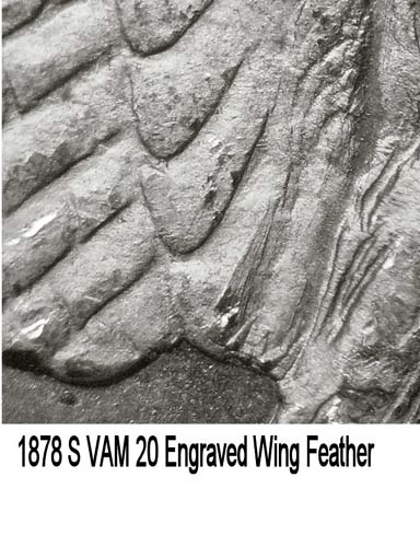 1878-S VAM-20 Eng Wing Feather.jpg