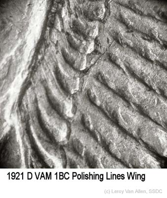 1921-D VAM-1BC Polishing Lines Wing.jpg