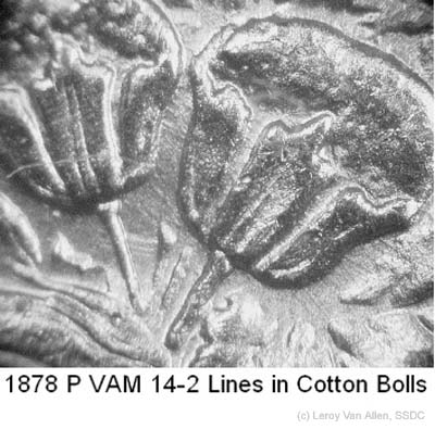 1878-P VAM-14-2 Lines in Cotton Bolls.jpg