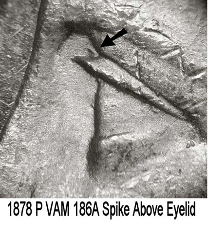 1878-P VAM-186A Spike Above Eyelid.jpg