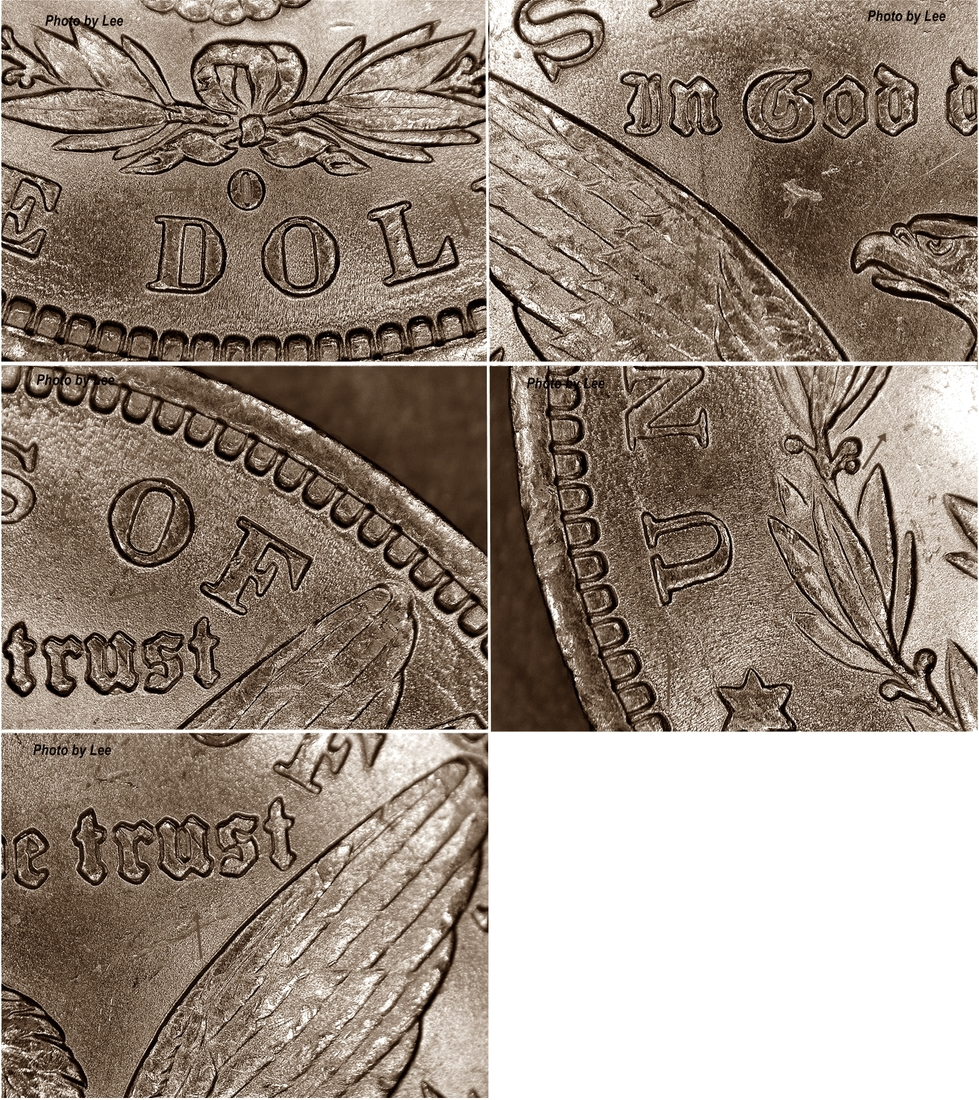 1881-o-reverse-features-Lee.jpg