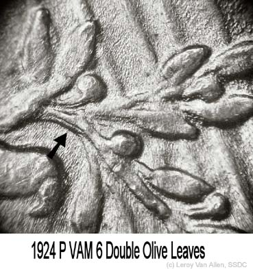 1924-P VAM-6 Doubled Olive Leaves.jpg