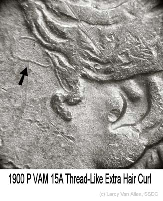1900-P VAM-15A Thread-like Extra Curl.jpg