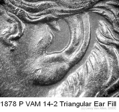 1878-P VAM-14-2 Triangular Ear Fill.jpg