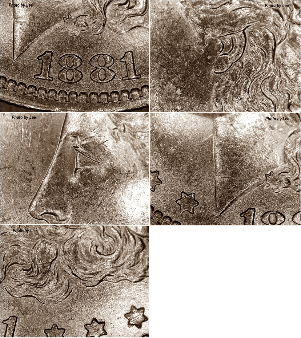 1881-O-obverse features-lee.jpg