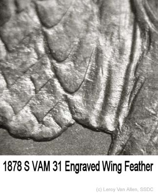 1878-S VAM 31 Eng Wing Feather.jpg