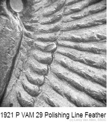 1921-P VAM-29 Pol Line Feather.jpg