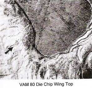 1878-P VAM-80 PLATE 6 DIE CHIP WING TOP 12 OCT 2010.jpg