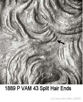 1889-P VAM-43 Split Hair Ends.jpg
