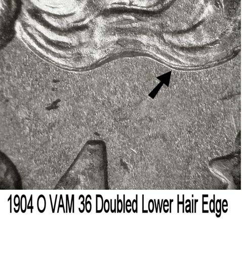 1904 O VAM 36 Dbld Lower Hair.jpg