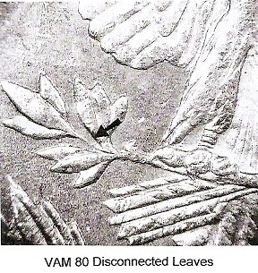 1878-P VAM-80 PLATE 7 DISCONNECTED LEAVES 12 OCT 2010.jpg