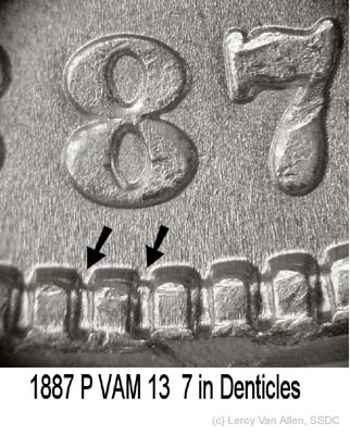 1887-P VAM 13 7 in Denticles.jpg