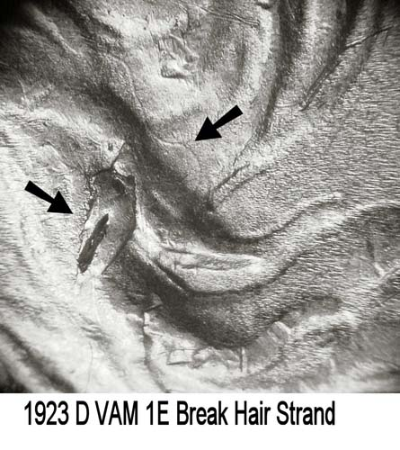 1923-D VAM-1E Break Hair Strand.jpg