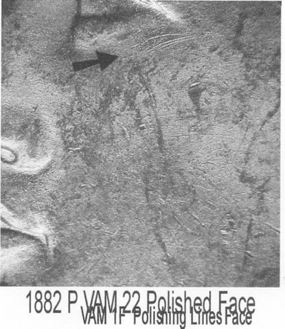 1882 LVA VAM1F eyescratchesplate2014.jpeg