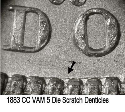 1883-CC VAM-5 Scratch Denticles.jpg