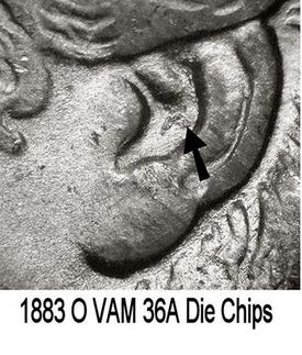 1883 O VAM 36A Die Chips Ear.jpg