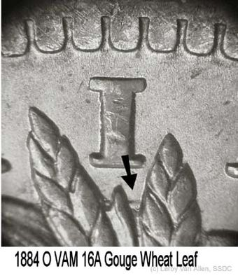1884-O VAM-16A Gouge Wheat Leaf.jpg