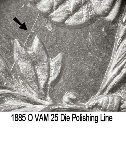 1885-O VAM-25 Rev Polishing Line.jpg