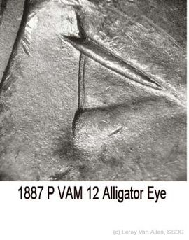 1887-P VAM 12 Alligator Eye.jpg